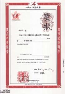 获奖证书_4