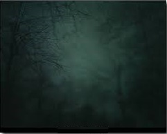 漆黑的夜里呼唤群星_1