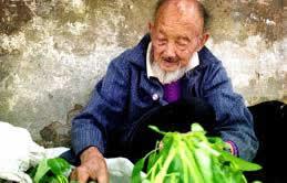 卖菜的老人_1