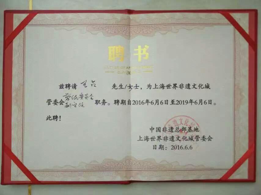 vice-director-certificate