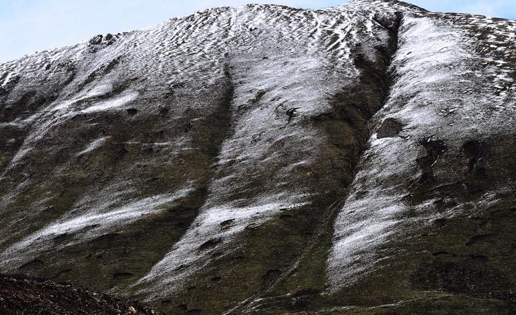 一篇草就風缠雪10