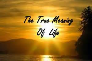Response to Meaning of Life